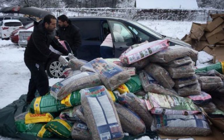 Futteraufruf: 13 Tonnen Futter für unsere Streuner ermöglichen uns einen wunderbaren Start ins neue Jahr