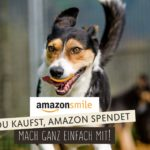 Amazon Smile Streunerparadies, Amazon spenden, Amazon Streunerparadies
